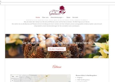 Blumen Gallucci Action Banner