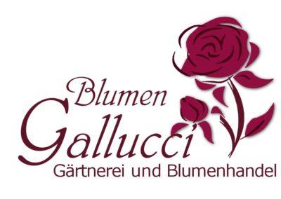Marketingmaterial – Blumen Gallucci